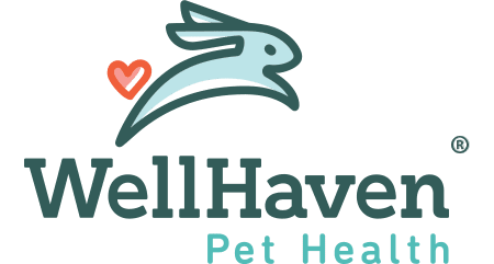 WellHaven Pet Health Bozeman